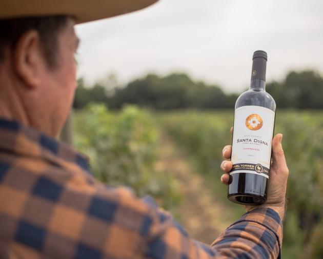 Onko eettinen viini myös paremman makuista?