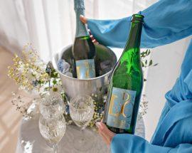 6 x parhaat matala-alkoholiset ja alkoholittomat viinit